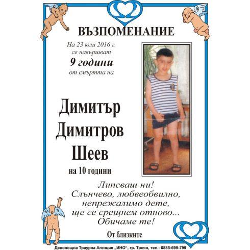Димитър Димитров Шеев